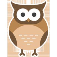 Raja Ampat Birdwatching